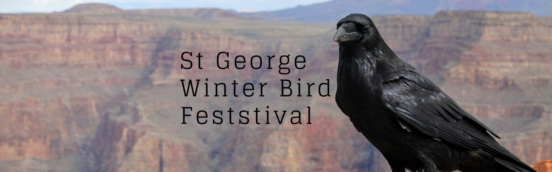 Tweeters Unite for the St George Winter Bird Festival
